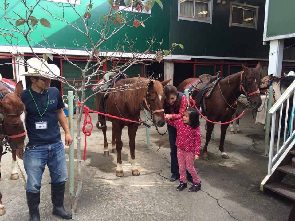 4.HorseCamp